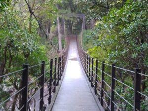 橋立吊橋 城ヶ崎海岸