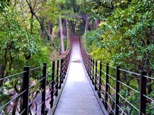 橋立吊橋 城ケ崎海岸