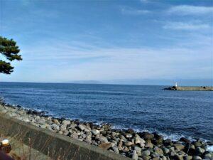 稲取港周辺